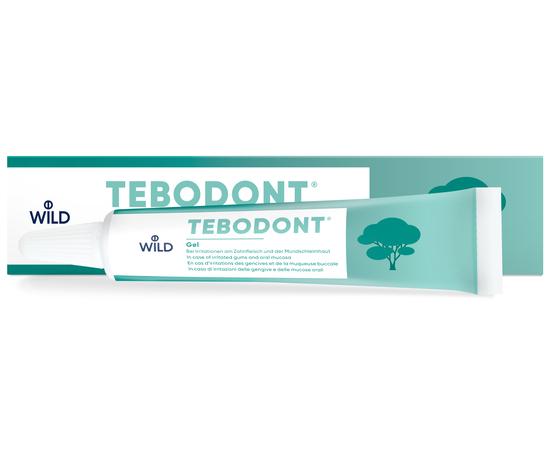 TEBODONT Гель с маслом чайного дерева (Melaleuca Alternifolia), 18 мл