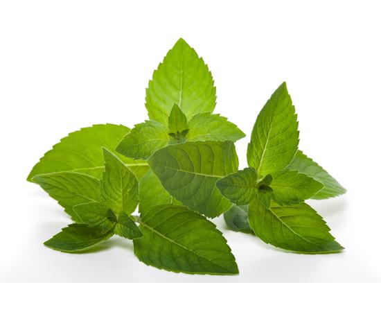 DOLOFRESH Бальзам с натуральными эфирными маслами, изображение 3