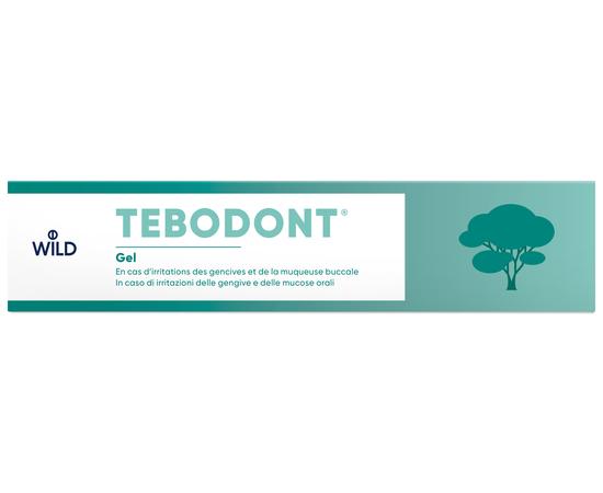TEBODONT Гель с маслом чайного дерева (Melaleuca Alternifolia), 18 мл, изображение 3